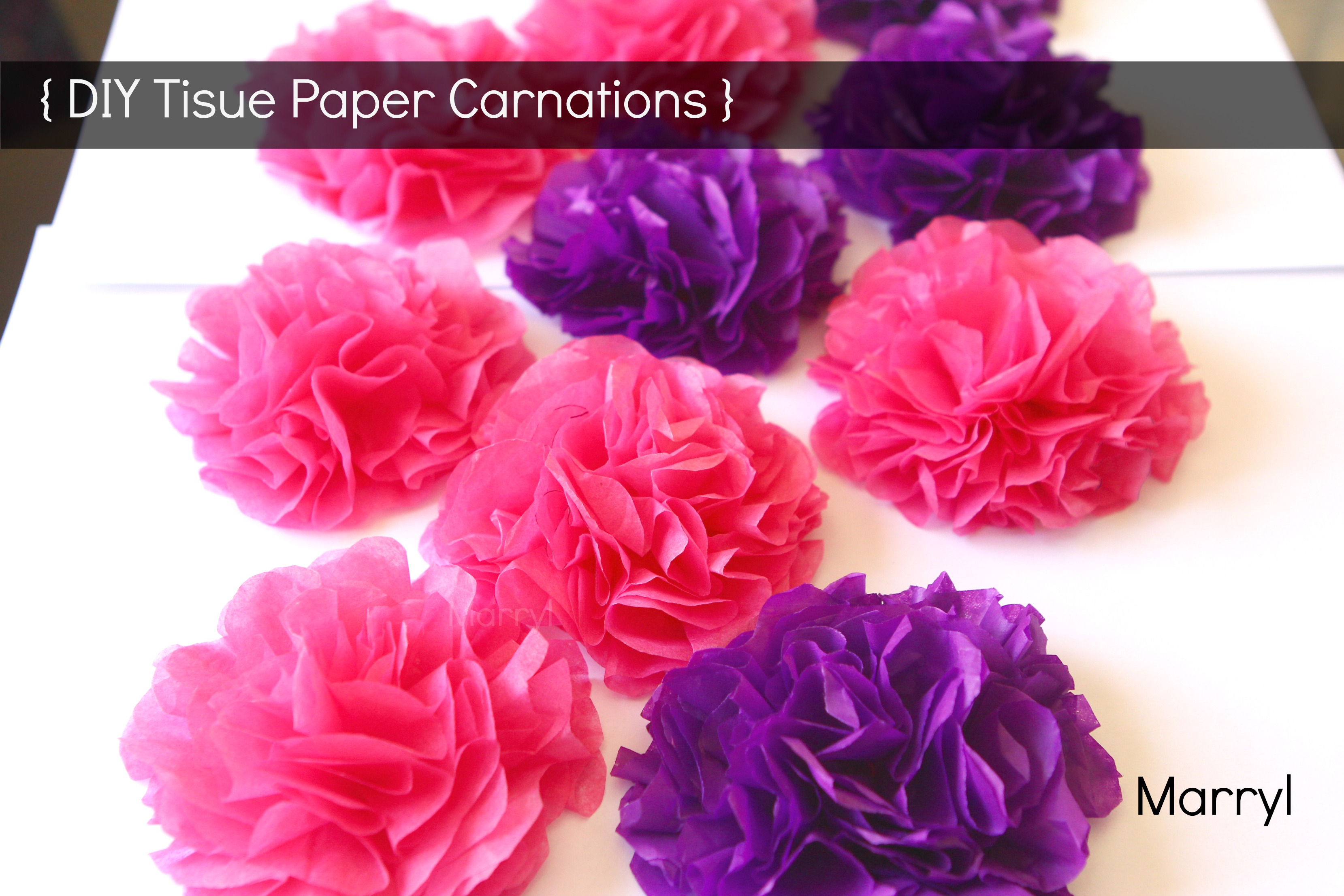 Diy Tissue Paper Carnations Marryl Crafts